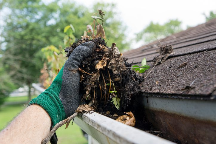 Gill Insurance | Cleaning Gutters During The Summer